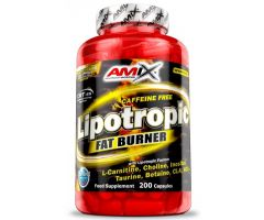Lipotropic Fat Burner 200kap Amix